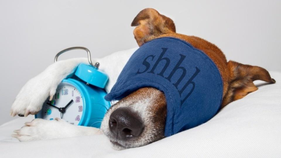 医学博士が教える、1分で眠るためのリラックス呼吸法