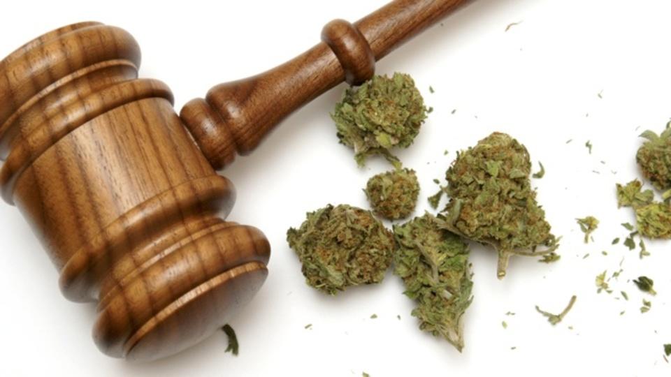 米国小児科学会が「マリファナ所持で若者を罰するな」と主張する理由