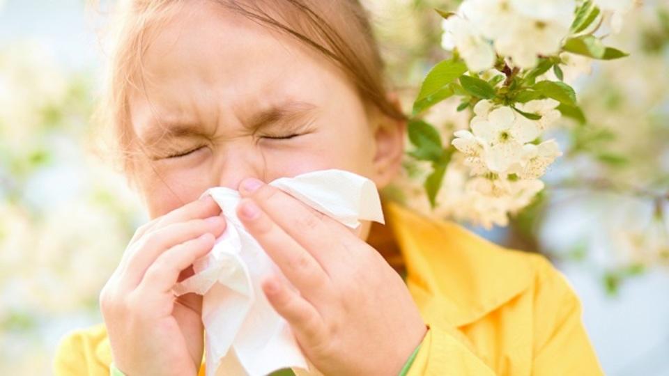 花粉症・アレルギー対策や風邪の予防に。痛くない簡単な「鼻うがい」の方法