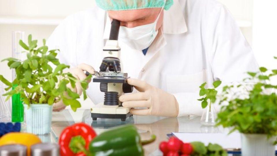 科学の知識を使えば、誰でも料理上手になれる
