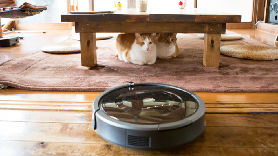 ネコと暮らす一軒家でロボット掃除機が大活躍!写真家・有高唯之氏のルンバ&ブラーバ体験