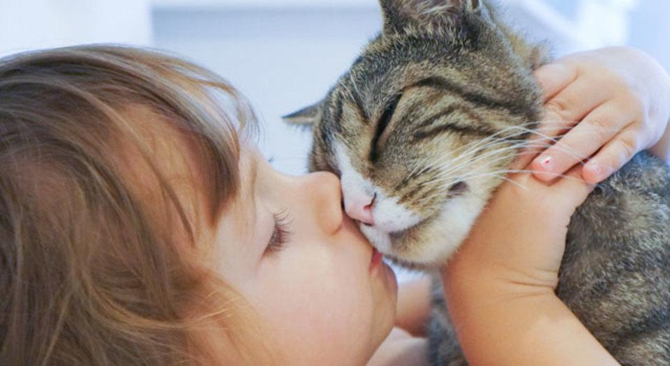 ペットからうつされる可能性のある、嫌な病気を防ごう