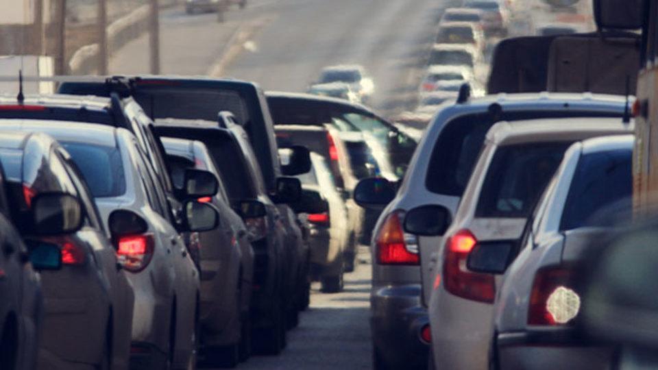 アリによる渋滞の切り抜け方。エゴをなくすと人生はどう変わるか
