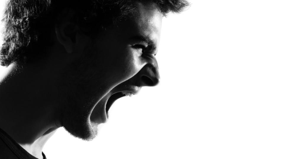 叫びが不安を増幅する:研究結果