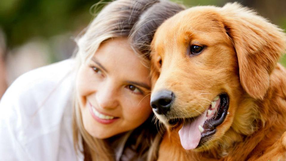 犬にとって危険な食品リスト