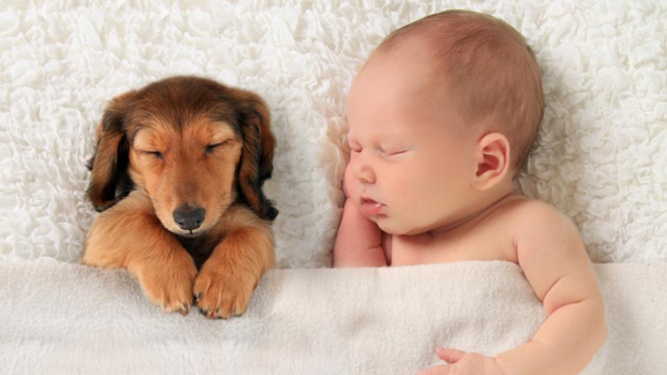 良い睡眠をとるための5つのヒント