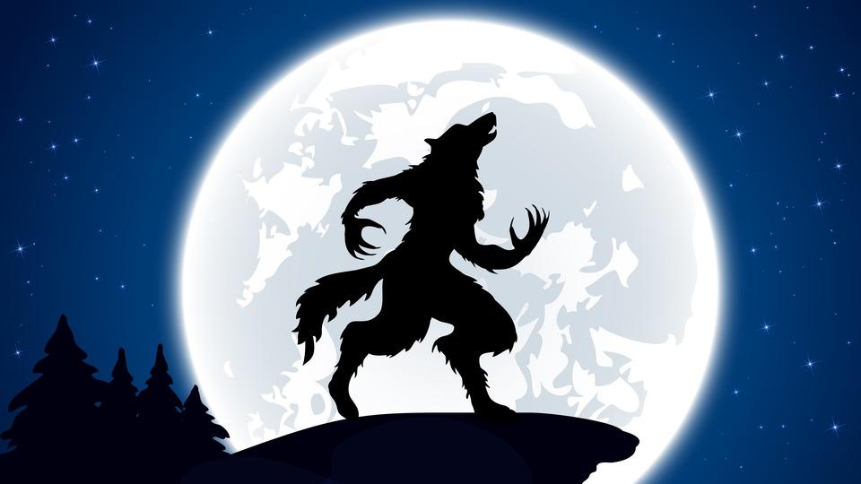 満月の夜は何かが起きる?錯誤相関に陥らないために