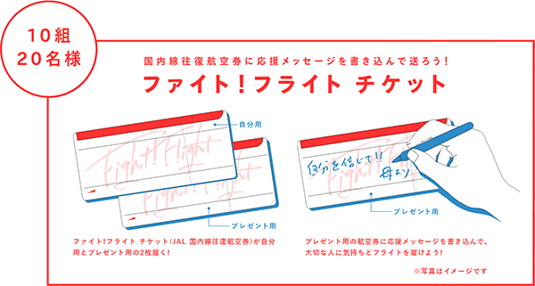 160322jal_ticket.png