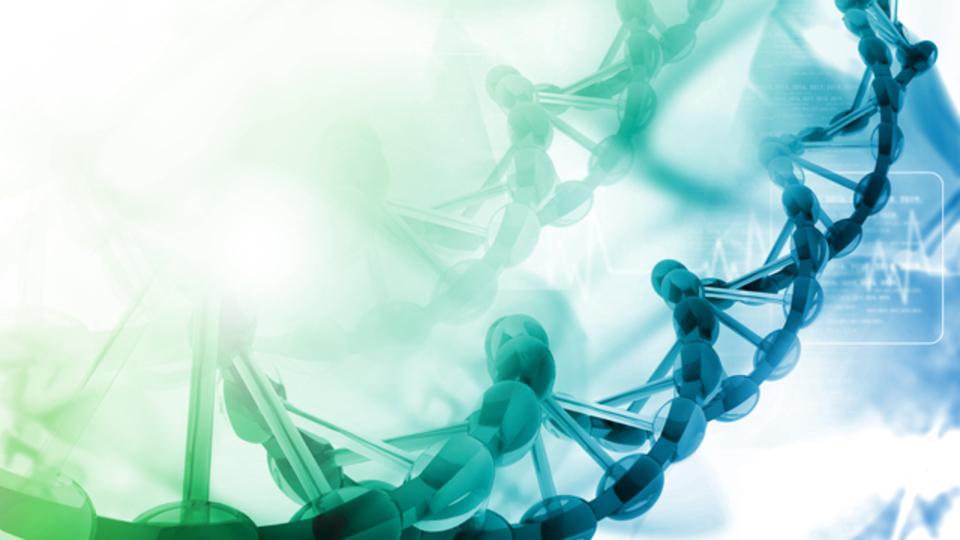 「遺伝子スイッチ」を切ることで記憶が消える?
