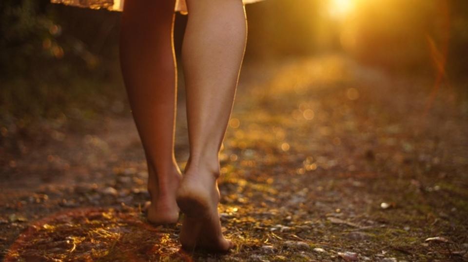 長い散歩は心の疲れをリフレッシュする妙薬