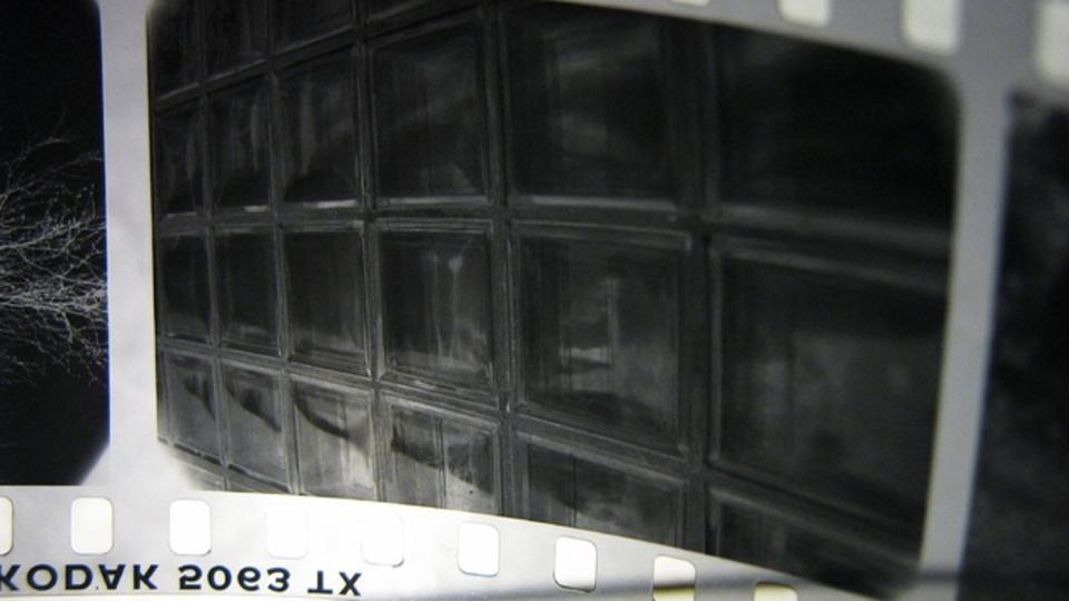 写真撮影をRAWファイル形式で行うべき理由
