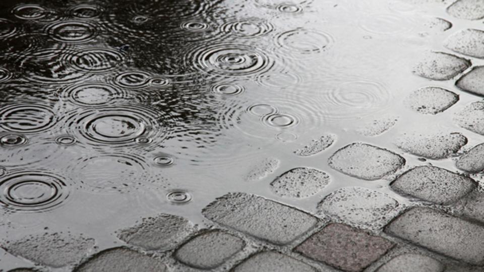降水確率50%の真の意味とは