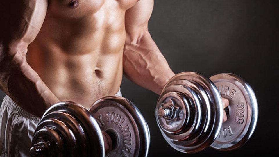 動きが少ない「等尺性運動」で筋肉が鍛えられるしくみとは?