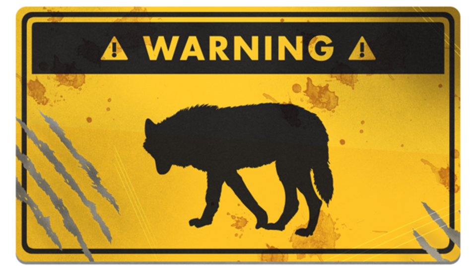 万が一に備えて、オオカミに遭遇した時の対処法を学ぼう