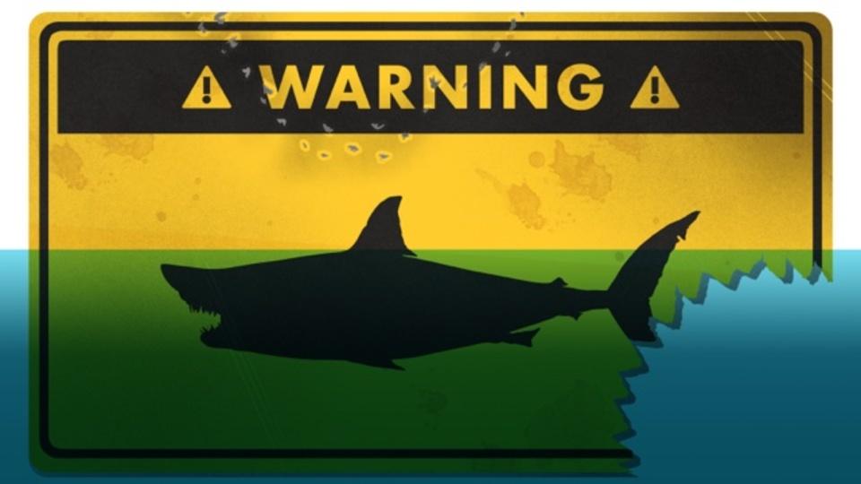 万が一、サメに襲われたときに生き延びる方法