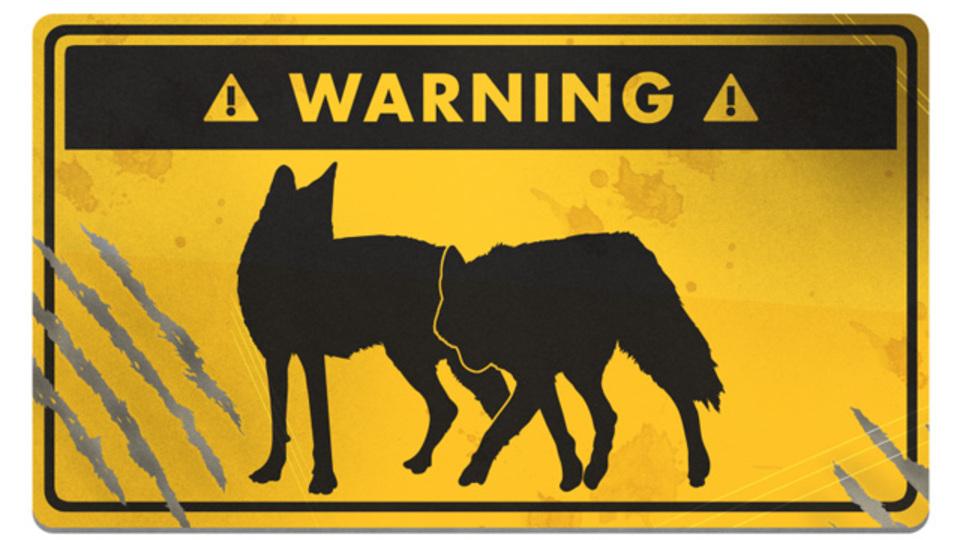「犬」に襲われたときの適切な対処法