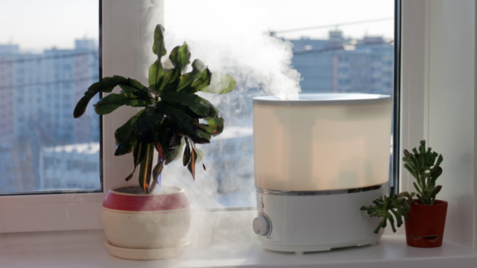 乾燥肌にはつらい季節が近づいている...。北欧スタイルの加湿器5選