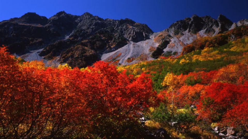 登山初心者でも行ける? 憧れの涸沢カールの紅葉を見にいこう!ほか〜木曜のライフハック記事まとめ