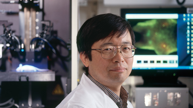 「近赤外線でがん細胞が1日で消滅、転移も治す」驚きのがん治療法を開発したのは日本人研究者!