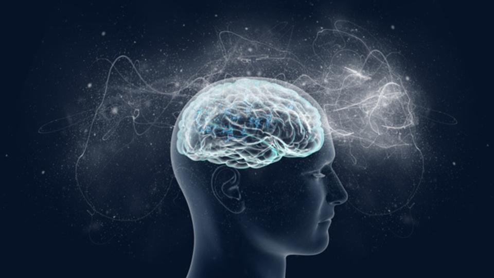 科学的に実証された「お金をかけずに頭の働きを良くするツール」