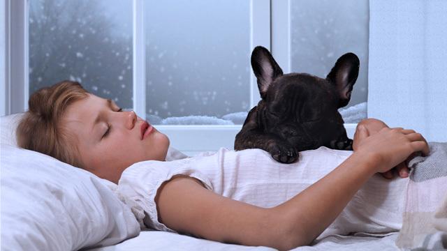 冬の朝起きれない人へ、スッキリ起きられる11の目覚ましテクニック・習慣ほか〜木曜のライフハック記事まとめ