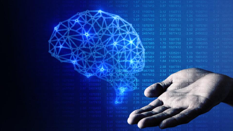 今日からできる、「知性と脳を育...