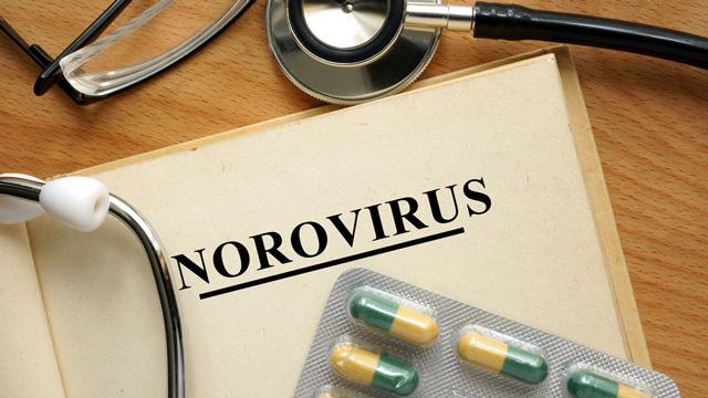 【毎年11~1月に流行】ノロウイルスにかかってしまった時の対応と対策ほか〜木曜のライフハック記事まとめ