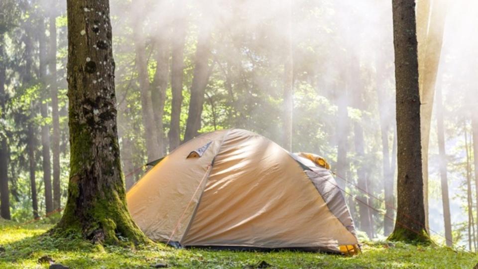 睡眠スケジュールをリセットするには「キャンプ」が最適