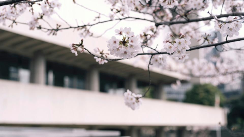 アートも満開。花を愛でる美術館5選:都心編【2017年版】