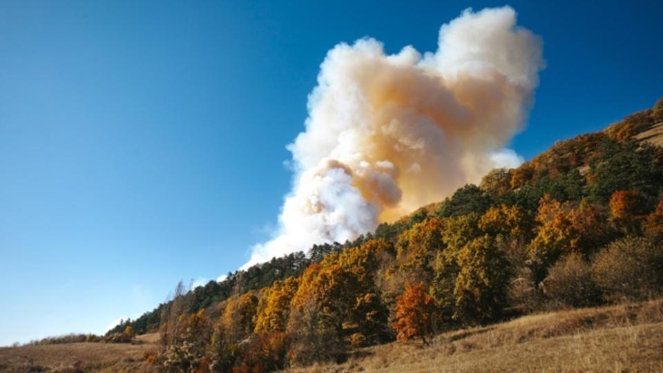 米国の山火事、84%が人為的な原因