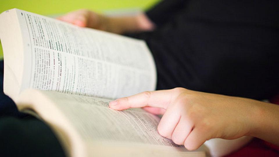 紙の辞書をめくる感覚を再現した「国語辞典」アプリ