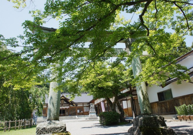 170322_roomie_fukui_5.jpg