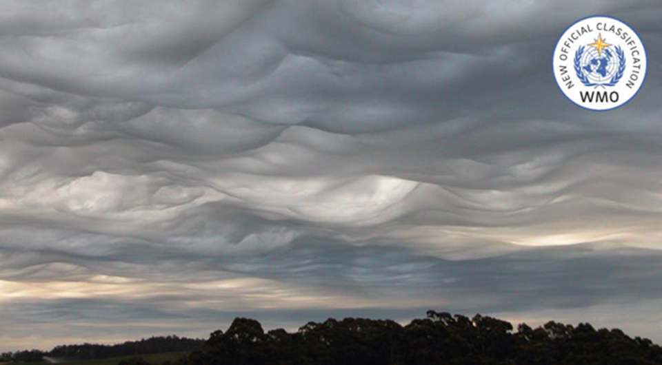 30年ぶりに新種の雲が誕生