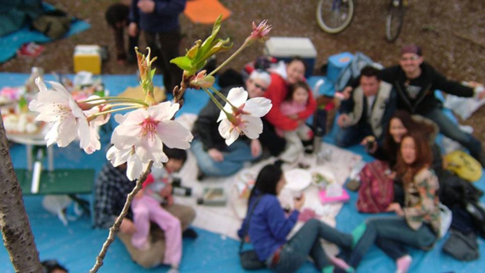 準備したい!「お花見に持っていくとゼッタイ便利」なアイテムたちほか〜木曜のライフハック記事まとめ