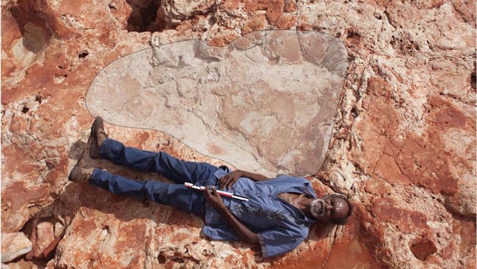 史上最大の恐竜の足跡が、オーストラリアで発見される