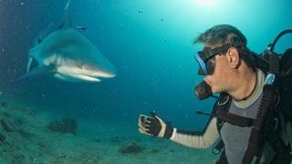 海軍特殊部隊の元隊員が教える「サメに襲われたとき」の対処法
