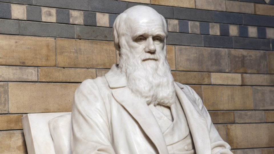 ダーウィンに学ぶ「イノベーションの鉄則」4箇条