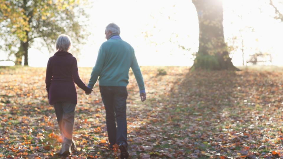 お似合いの夫婦は、遺伝子構造まで似通っている?