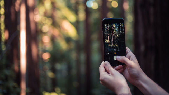 iOSのカメラ・アプリ「Halide」なら、アマチュアもプロになれる