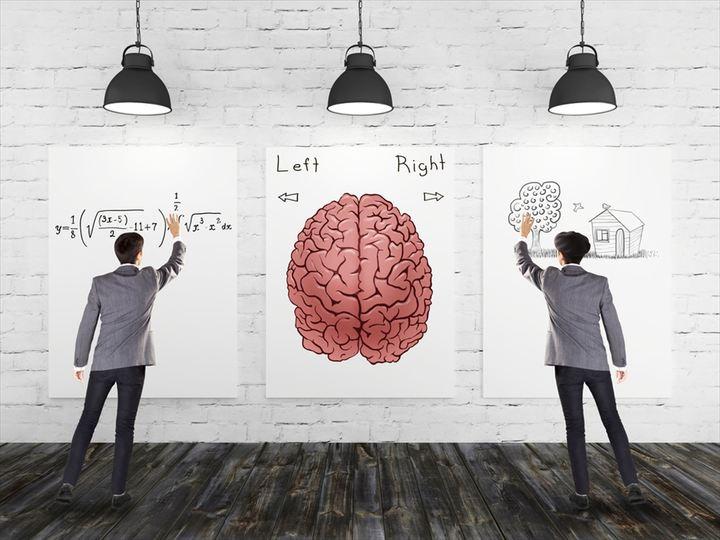 科学研究:右脳・左脳神話はウソだった