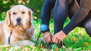 両手が空くので、犬の散歩がグッと楽になるリード『ReLeash』【今日のライフハックツール】
