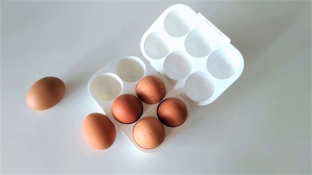 どうしてもキャンプに卵を持っていきたい時の専用ホルダー【今日のライフハックツール】