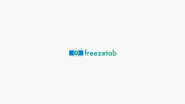 ブラウザで開いているタブを一時的に保存できる拡張機能「Freezetab」