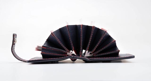 パンパンの財布!を薄くするなら「カードケース」と「名刺入れ」を集約させるといい