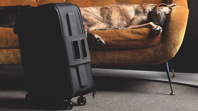 独創的な6輪スーツケース『iby6』【今日のライフハックツール】