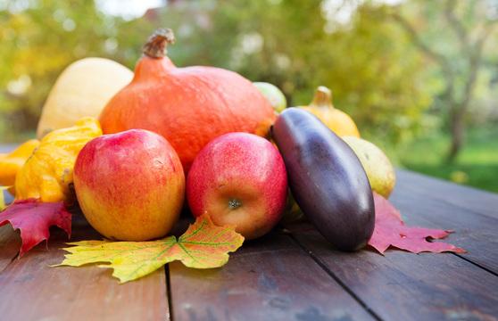秋の「食」を味わい尽くす記事まとめ