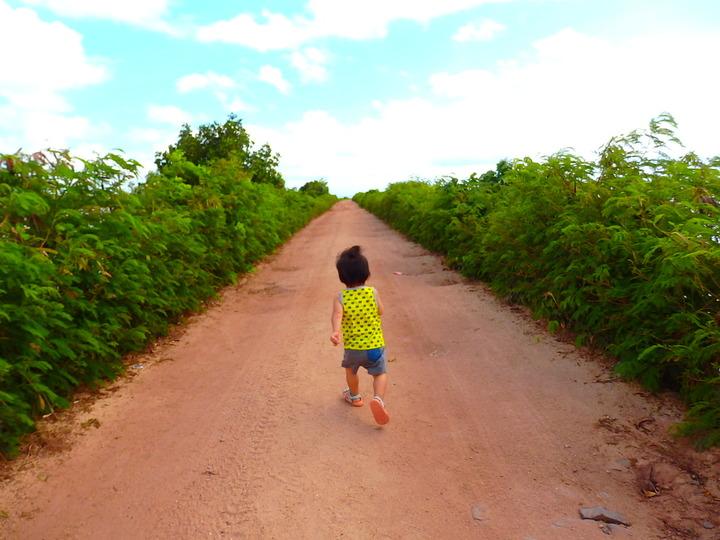 南国フィジー版「森のようちえん」自然いっぱいの日常が子どもの好奇心を刺激し想像力を育む