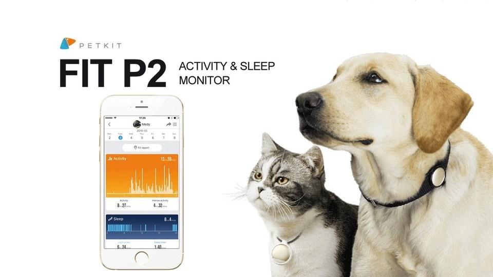 まさにペット用のFitbit。愛犬、愛猫の活動量を調べる「FIT P2」がキャンペーンを開始