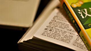 英語ネイティブにとって、日本語は最も習得困難な言語の1つ:調査結果