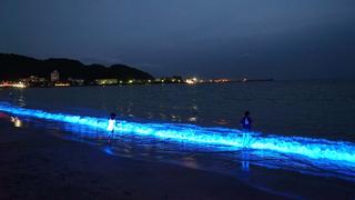 テレビの「イ」から光る海まで。浜松市で「光」のベンチャーが盛り上がる理由